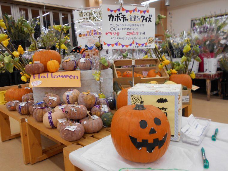 ハロウィンかぼちゃの重量当てクイズ