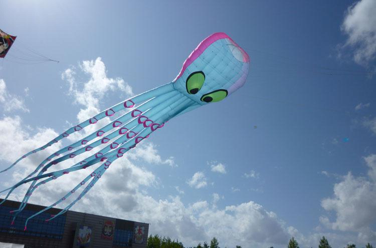 さまざまなユニーク凧が空を舞います