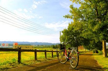 【十日町市】清津峡入口で自転車レンタルします