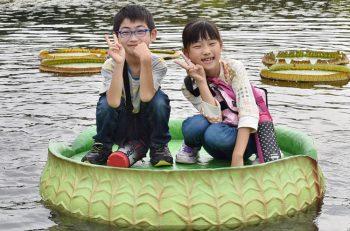 葉っぱ一枚の上に乗って水上に浮かぶ「オオオニバス試乗体験」ができる!