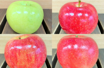 りんごサミット開催!県内外の個性豊かな品種が集結【いっぺこ~と11月イベント情報】