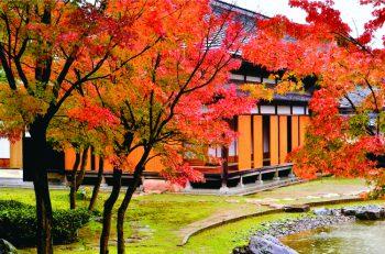 11月3日(日・祝)文化の日は新潟市内の文化施設が観覧無料です!