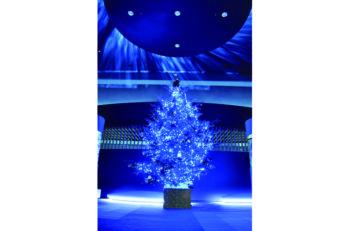 水族館内にクリスマスツリーが出現! 点灯式にはミニライブも開催