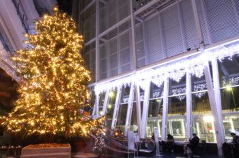NEXT21・アトリウムが、巨大クリスマスツリーとイルミネーションで華やかに!