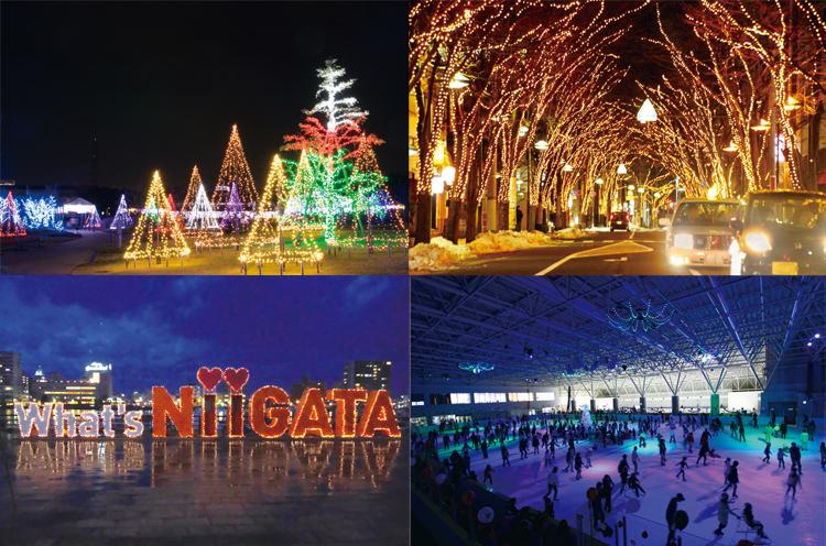 新潟市の冬を彩るイルミネーション5選! 光に包まれる冬のひとときを過ごそう