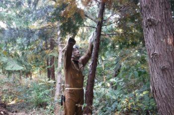 「山の仕事」も良いよ! 林業就業希望者向け相談会&短期講習 新潟で開催