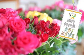 摘みたてのバラが買える月イチショップ【県内特派員HOT NEWS・南魚沼特派員/阿部順子さん】