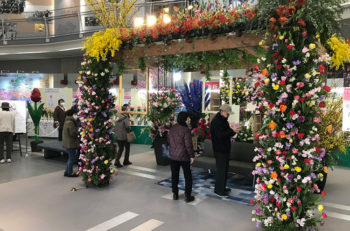 少し早い春がやってくる! 新潟ふるさと村で花の祭典