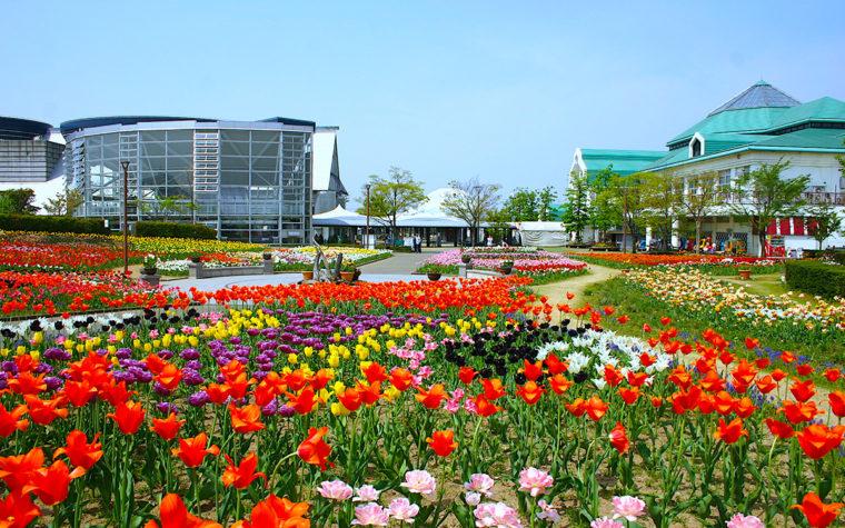 道の駅 新潟ふるさと村の詳細は画像をクリック!
