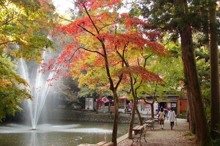 池の端で紅葉と噴水をのんびり眺めよう