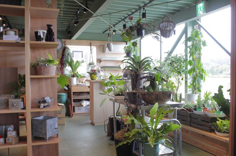 観葉植物や雑貨を販売、Potta-GreenWorks