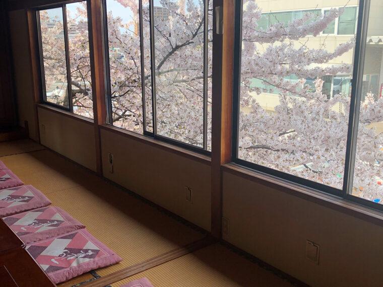 2階の座敷からは桜がきれいに見えるんです