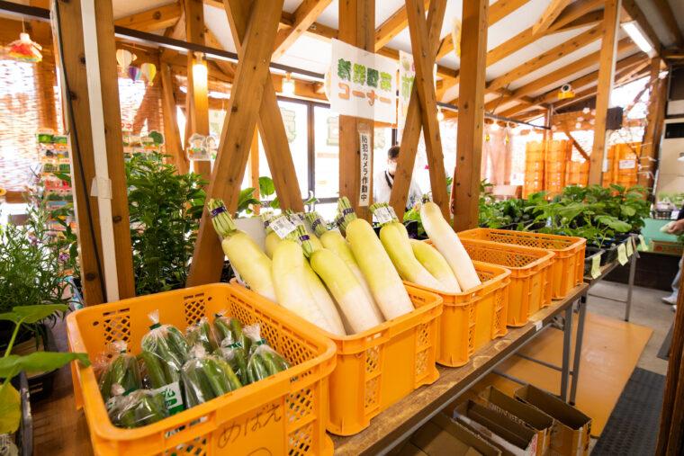 農産物直売所には新鮮な野菜がズラリ