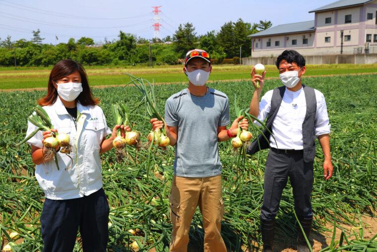 生産者の吉田さん(写真中央)とJA柏崎の上條さん