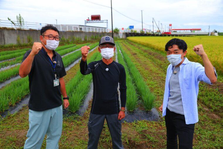 生産者の斎藤さん(写真中央)とJAにいがた南蒲の長谷川さん