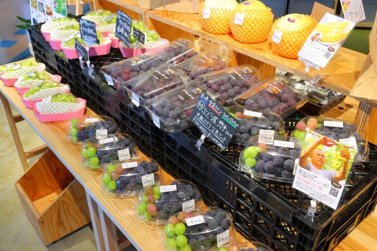 農産物の直売コーナーや、県内の名産品、素敵な工芸品も販売。どんな品があるか、店内を探しまわる楽しみがあり!