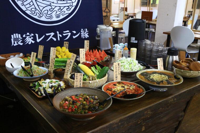 サラダ、煮物、炒め物、揚げ物など、野菜たっぷりの料理が約10種類並びます